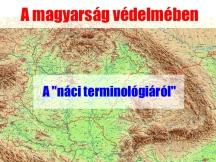 A náci terminológiáról