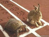 verseny