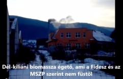 Biomassza égető