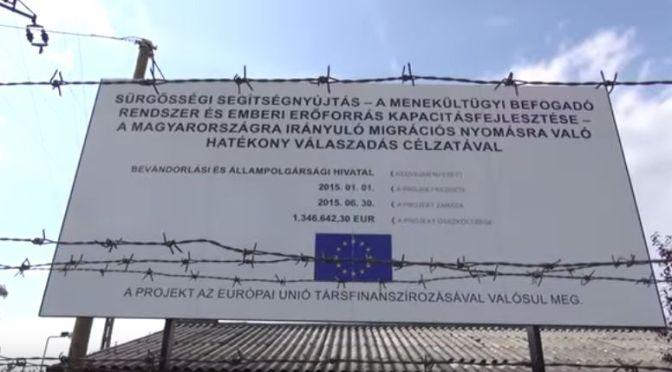 Milyenek a magyarországi menedékkérők körülményei?