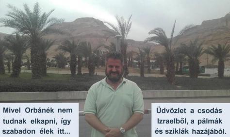 """A magyar gyűlölettől fröcsögő """"ügyvéd"""" a palesztin vértöl locsogó pálmafák tövéből üzent, nekünk bögatyás magyaroknak."""