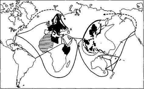 Németország és Japán maximális expanziója. 1931-1942