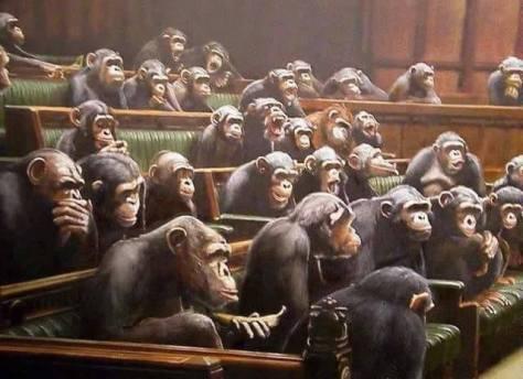 Parlamenti demokrácia
