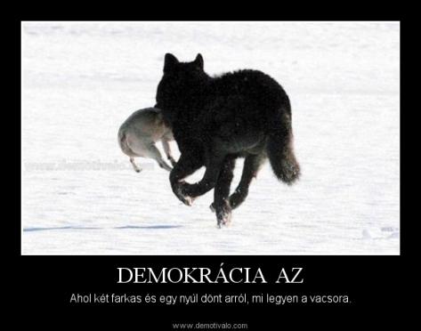 demokracia-2farkas-1nyul
