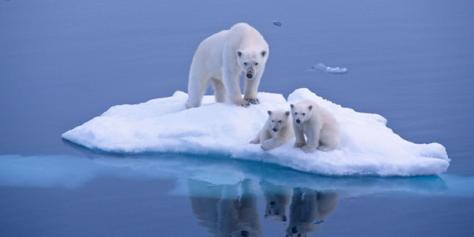 Réchauffement climatique progrès technique décroissance et misère politique