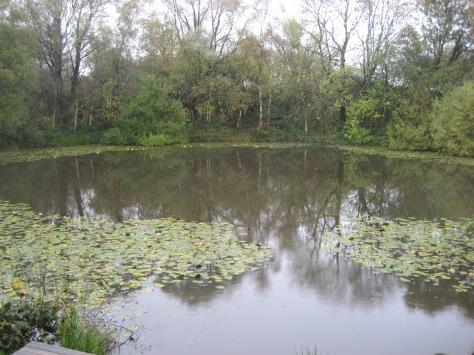 A Pool of Peace néven ismert emlékhely valójában a második messines-i csata kezdetén felrobbantott alagutak helyén maradt kráter