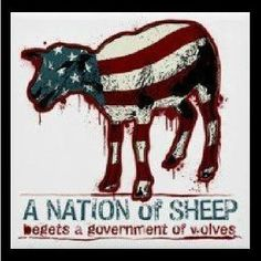 usa-nation-of-sheep