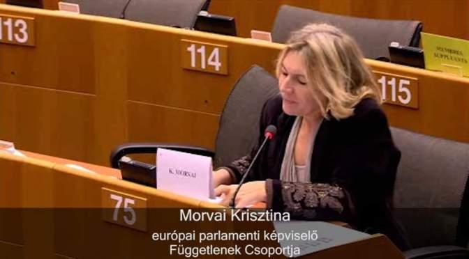 Követeljünk jogokat az elszakított magyaroknak! (Felhívás európai polgári kezdeményezés aláírására)