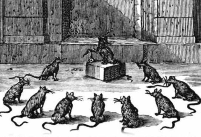 Vírusnak látszó beszélő patkány