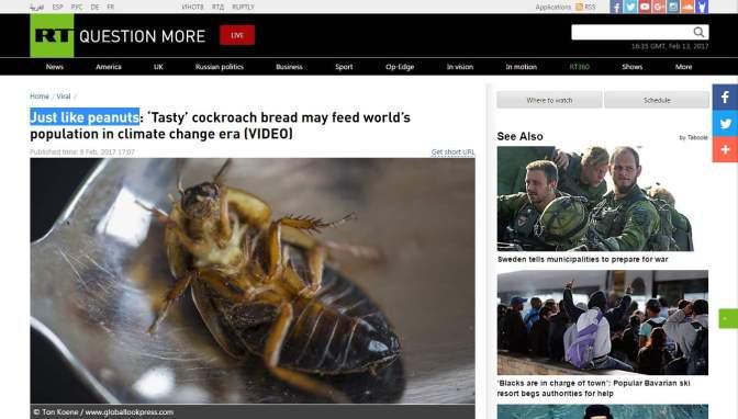 Pont olyan, mint a mogyoró: 'ízletes' csótánykenyér táplálhatja majd a világ népességét az éghajlatváltozás korában (videóval)
