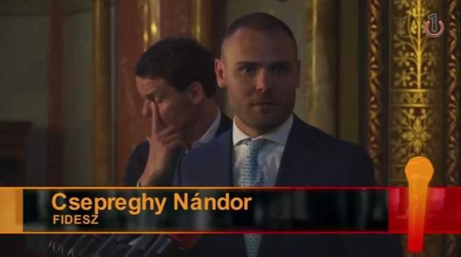 Aki a Fidesz ellen szól, annak kitörik a nyakát