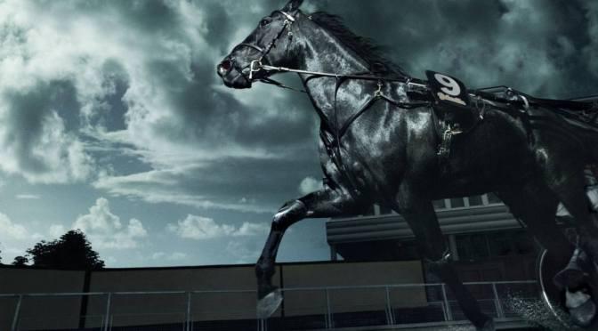 Sötét ló